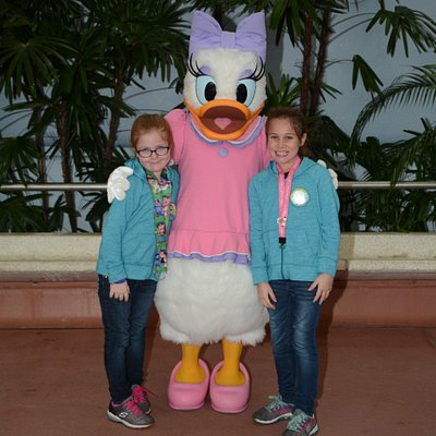 Meet Daisy Duck