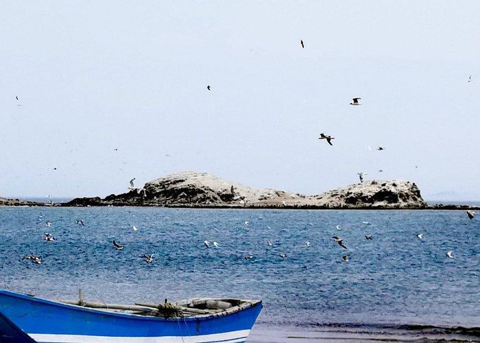 Playa Cocoi, Huacho