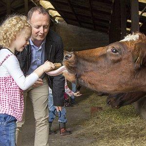Die dieren voeren en leuke dieren vragen stellen aan de boer.