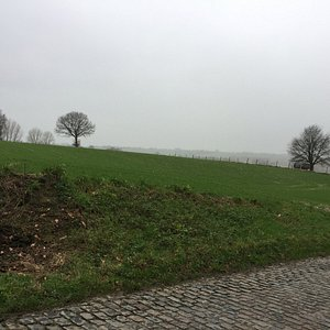 Typical Flemish road with cobblestones and such a wonderful nature and landscape