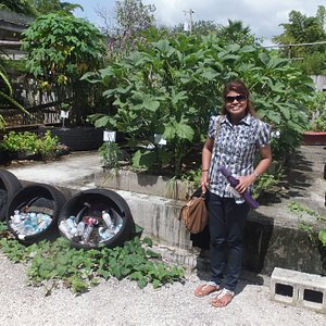 Demonstration of rooftop gardening for city dwellers where no garden plots are available.