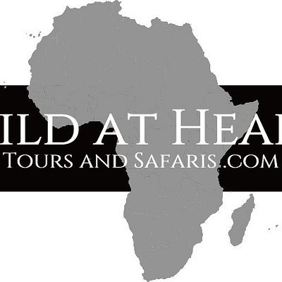 Wild at Heart Tours and Safaris Logo