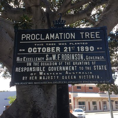 Proclamation Tree Sign
