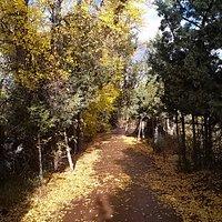 Autumn on the Riverwalk in Town Park