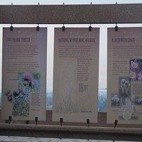 Info panels 2