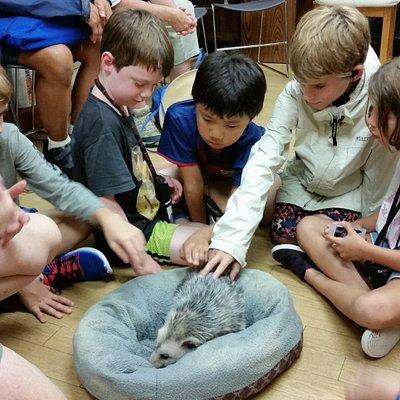 Kids petting a possum on a South Florida Play Away Adventure