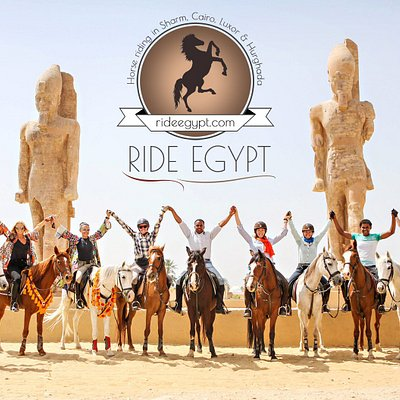 Horse riding holidays and excursions in Hurghada and Luxor Egypt