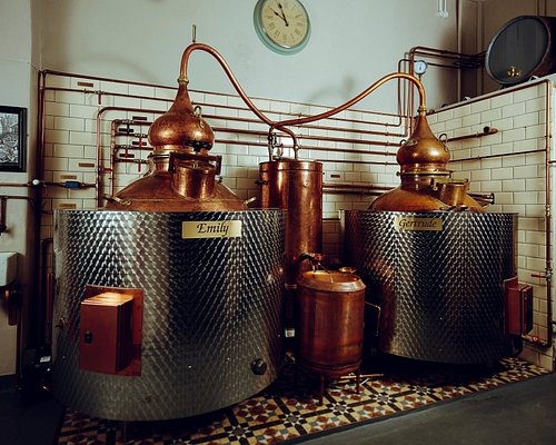 Our stills Emily and Gertrude.