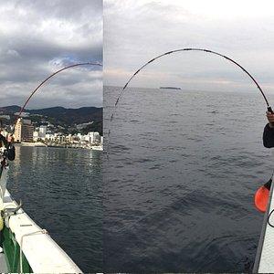 手ぶらで簡単、楽しい体験釣り Empty-handed, just come join us for fun fishing