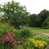 Borders in the pleasure garden.