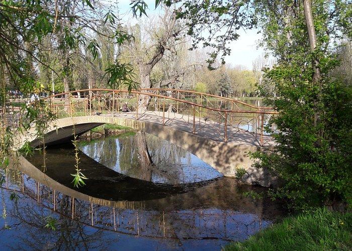 красивый мостик на пруду