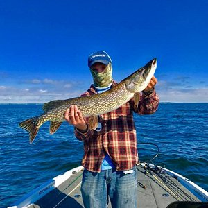 Nov 2017 - Another wonderful year on the water got to me lots of great people and share some awe