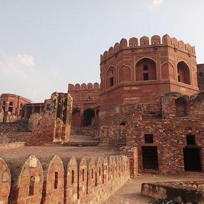 Pics by tour guide Pankaj Bhatnagar - +918126995552
