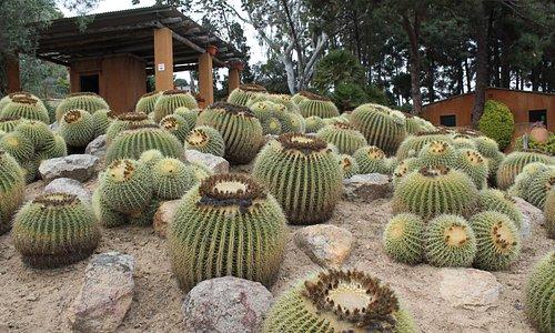 Jardines Pinya de Rosa