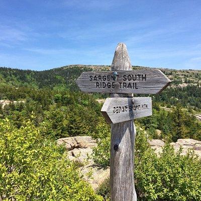 On the way to Penobscot Mountain summit