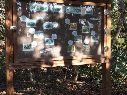 Board has photos of the snakes found in this area - poisonous and non-poisonous. A bench is oppo