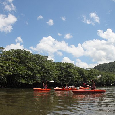 自然いっぱいの西表島でのんびり過ごす贅沢