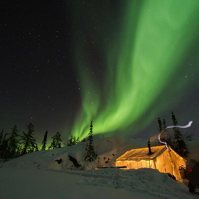 The Northern Lights dancing above our tour tent.