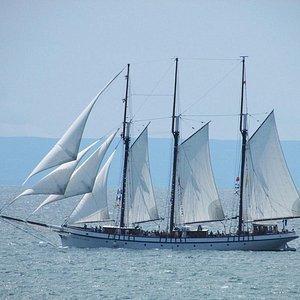 The Tall Ship:  Empire Sandy