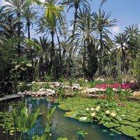 Foto estanques Jardín