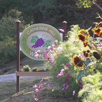 Catherine Hill Winery, Cherryfield, Maine