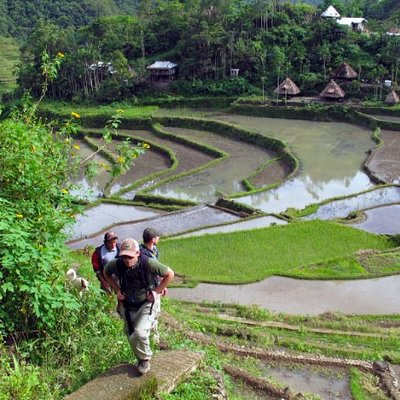 Hiking through the rice terraces of Batad, Ifugao