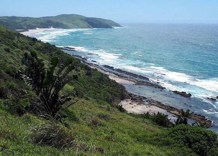 Coastline.