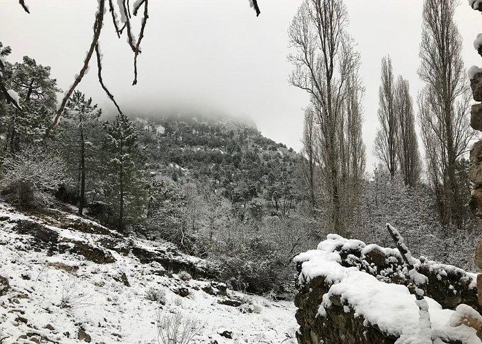 Cerca de Cortijos Nuevos, Sierra del Segura (Jaén)