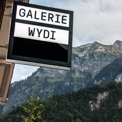 Galerie Wydi