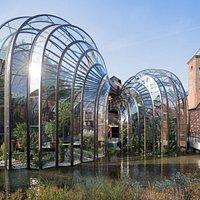 Glasshouses