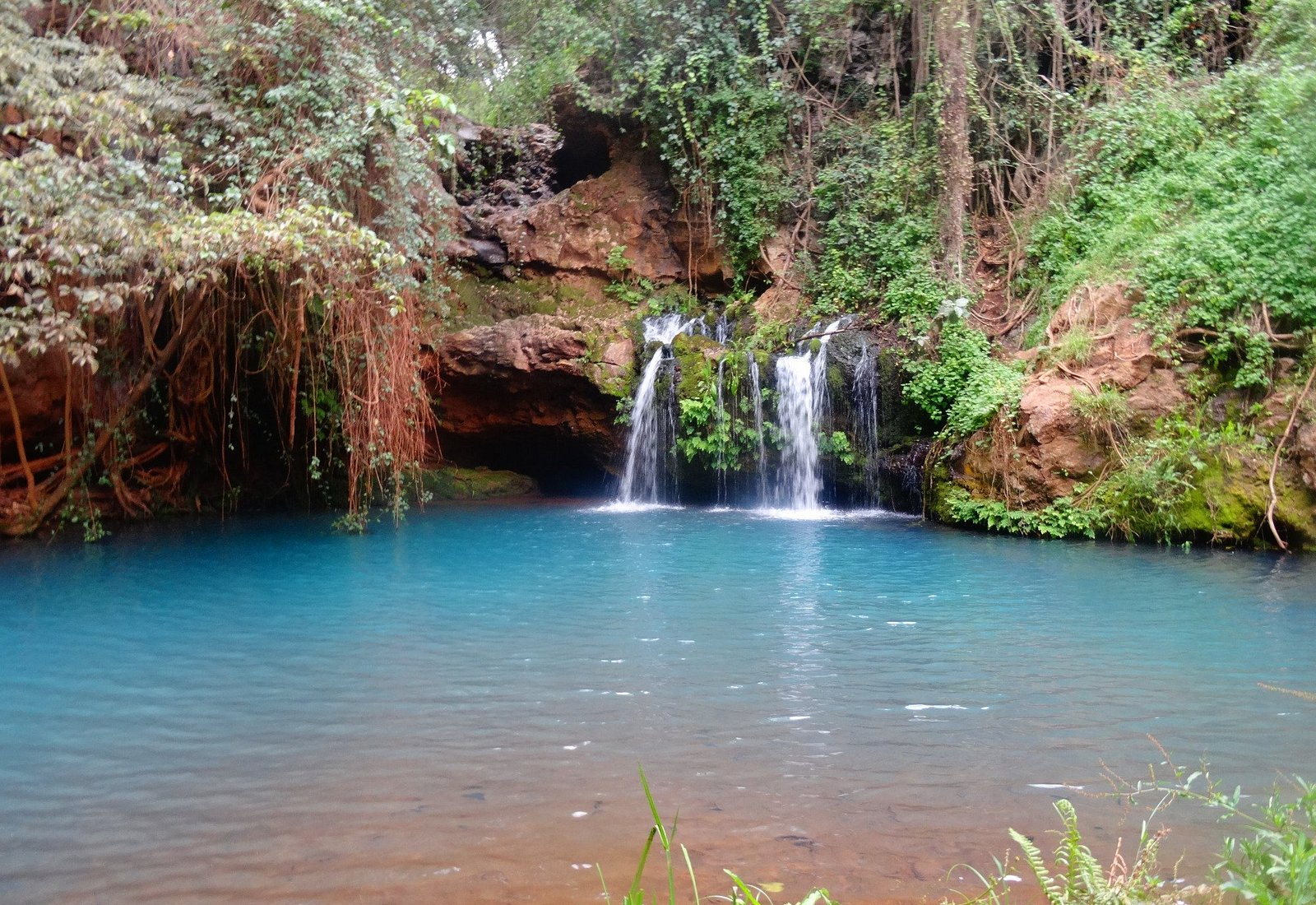 The blue pool. Source of Ngare Ndare river