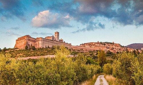 Assisi: 20km