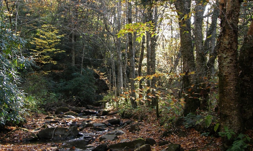 Grandfather Mountain State Park gives hikers a wonderful day in the outdoors.