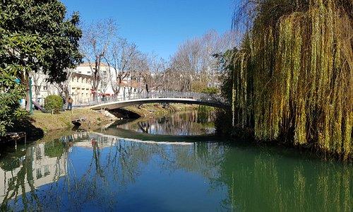 Один из мостов парка