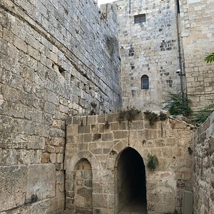 portrait view of the entry tunnel and exposed section of the western wall...