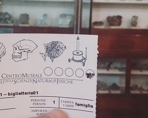 Ticket which you can enter all 5 museums. Behind collection of minerals