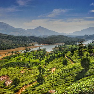 One of the most popular destinations in Kerala, Munnar is brimming with expansive tea gardens, m