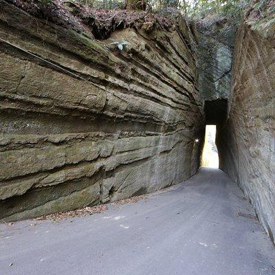 燈籠坂大師切通しトンネル:全景