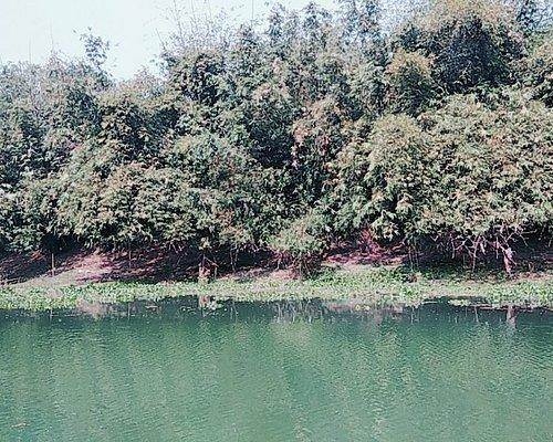 Bibhutibhushan Wildlife Sanctuary