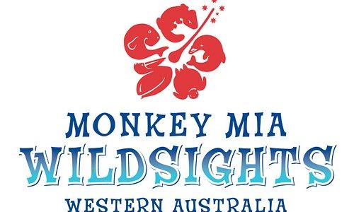 Wildsights Logo