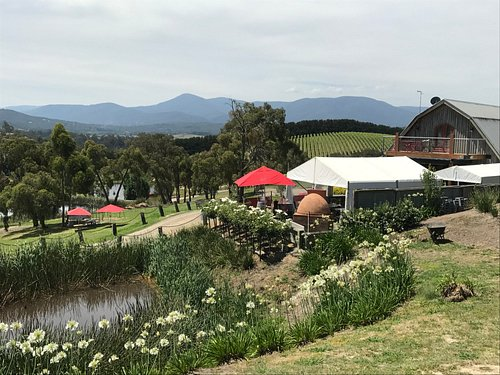Gorgeous boutique winery on our Yarra Valley private tours.