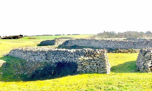 Enceinte néolithique de Champ-Durand