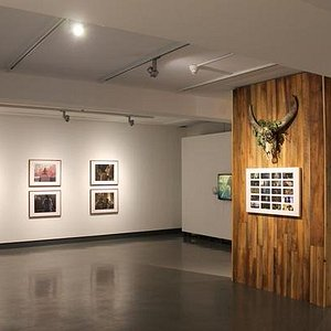 Greenboots at the Art Gallery of Sudbury (October 2015)