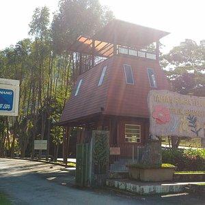 Teluk Bahang Forest Eco Park