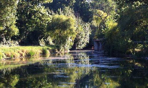 Balade pédestre au coeur de la Venise Verte au départ de L'Ecurie du Marais