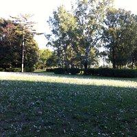 Parco Villa Solaria
