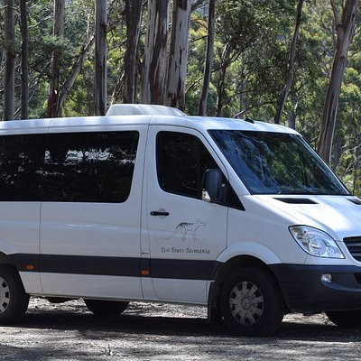 Eco Tours Tasmania operate a luxury Mercedes Benz mini bus