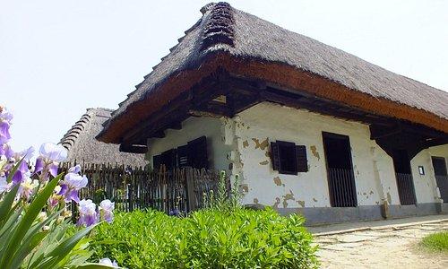 Göcseji Falumúzeum 19. századi tájházak