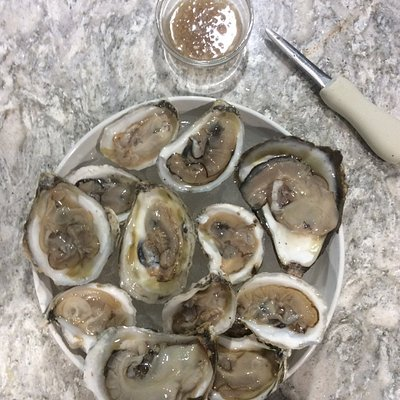 Maine Oysters from Harbor Fish Market