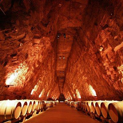 La Cathédrale du vin